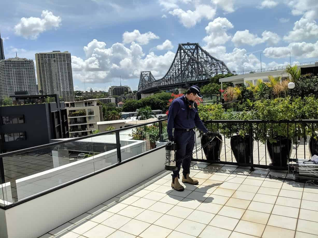 Response Pest Control | Brisbane | Termite Inspections | Termite Barriers | Pest Control | End of Lease | Natural Pest Control | Fleas | Cockroaches | Silver Fish