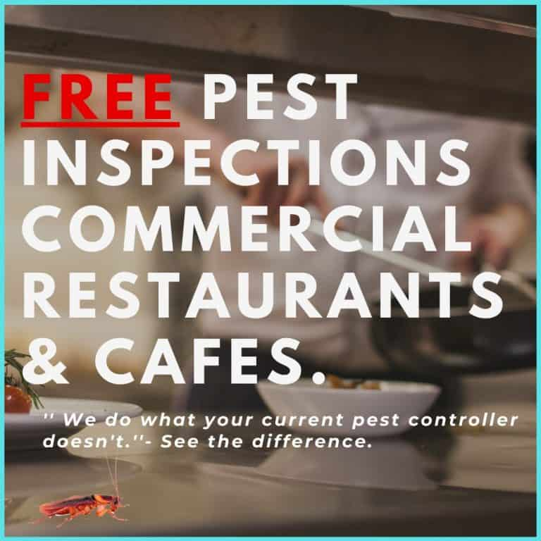 Free Pest Inspections